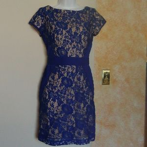 Royal blue & nude lace day to evening dress.